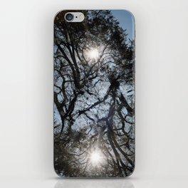 Arterial California TREES iPhone Skin