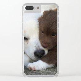 IcelandicSheepdog_20171203_by_JAMFoto Clear iPhone Case
