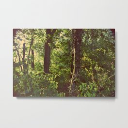 Trees in the Morning Metal Print