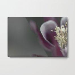 Blooming Color Metal Print