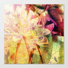 waterlily 2 Canvas Print