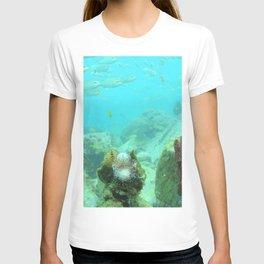 Watercolor Seascape, St John 70, USVI T-shirt