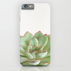 Green Succulent iPhone 6s Slim Case