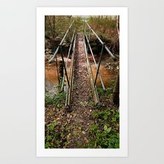 A bridge, a trail and the forest | architectural photography Art Print