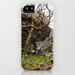 Room To Breathe iPhone Case