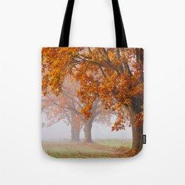 Oaks in the misty Autumn morning (Golden Polish Autumn) Tote Bag