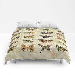 Moths & Butterflies Comforters