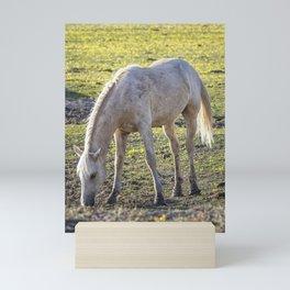 Traveler Portrait, No. 3 Mini Art Print