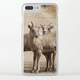 Which Way! Clear iPhone Case