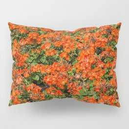 Orange Garden Pillow Sham