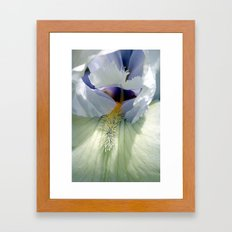 A Touch Of Lilac Framed Art Print