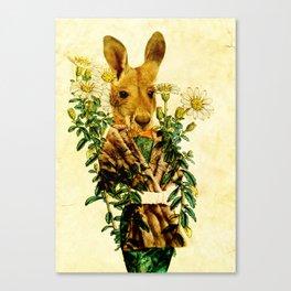 Australian Icon: The Kangaroo Canvas Print