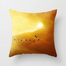 Flight over the desert Throw Pillow