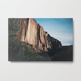 Lets Build a Wall Metal Print