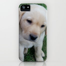 Whatever you want Lab puppy iPhone Case
