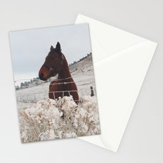 Snowy Horse Stationery Cards