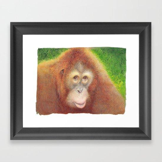 Monkey Framed Art Print