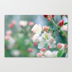 Emerging Beauty Canvas Print