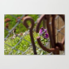 Iron and Purple Flowers Canvas Print
