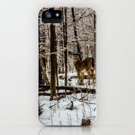Deer in the Glistening Forest by Teresa Thompson iPhone Case
