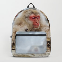 The Japanese macaque also known as the snow monkey Backpack