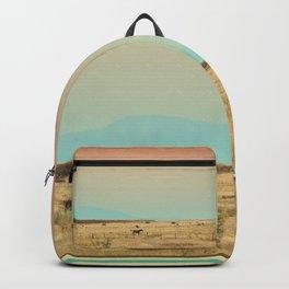 251 | marfa Backpack