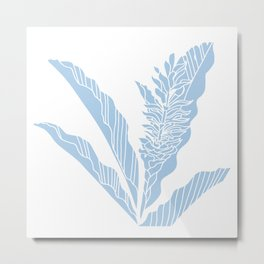 tropical ginger placid blue Metal Print