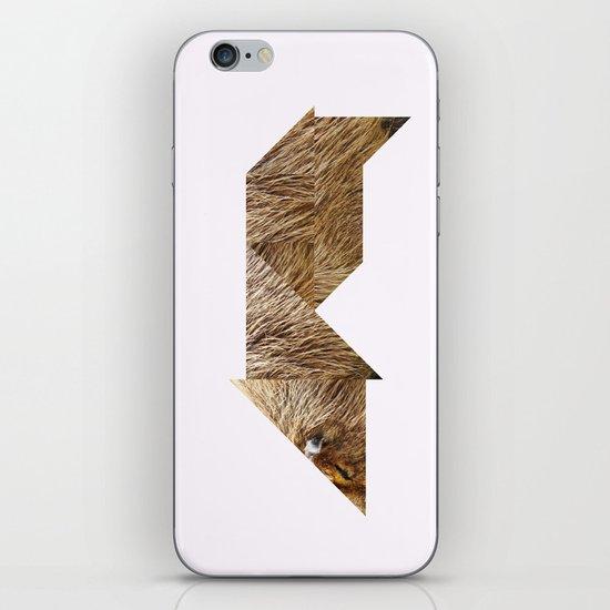 CAPYBARA iPhone & iPod Skin