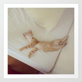 Dancing Kitten Art Print
