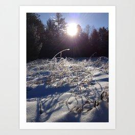 Winters frosty glow Art Print