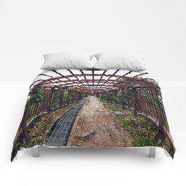 KR / 05 Comforters