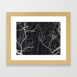 Night Dream Framed Art Print