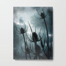 Twilight Teasles Metal Print