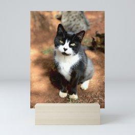 Heart Nose (Lanai Cat Sanctuary) Mini Art Print