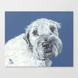 Kahly a sweet Wheaton Terrier Canvas Print