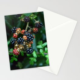 blackberries in red and black Stationery Cards