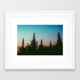 TREES - SUNSET - SUNRISE - SKY - COLOR - FOREST - PHOTOGRAPHY Framed Art Print