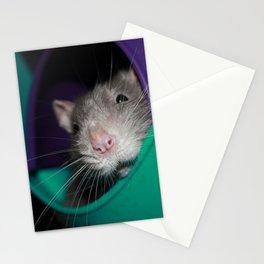 Remington Stationery Cards
