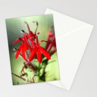 Cardinal Flower Stationery Cards