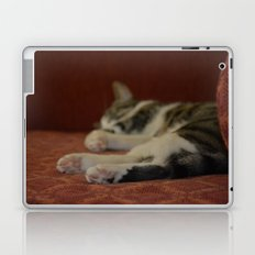Cat Paws Laptop & iPad Skin