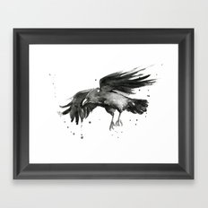 Raven Watercolor Bird Painting Black Animals Framed Art Print