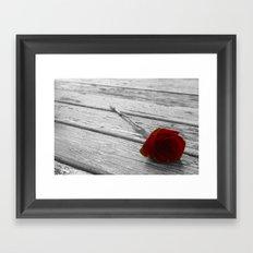 The single rose Framed Art Print