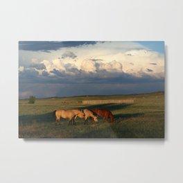 Horse Creek, WY Metal Print