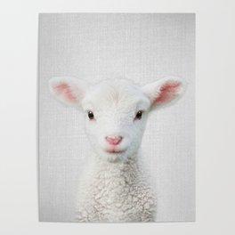 Lamb - Colorful Poster