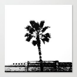 Black & White Palm Canvas Print