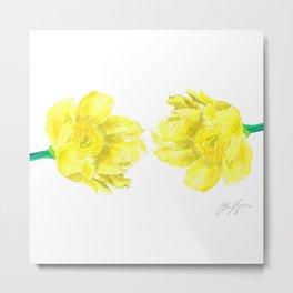 Two Yellow Peony Flowers Metal Print