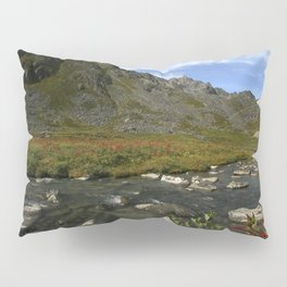 Hatcher Hike - Alaska Pillow Sham