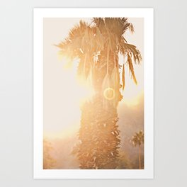 California Fine Art Print Yellow, Peach, Cream La Quinta Palm Tree Photograph - Desert Sunset  Art Print