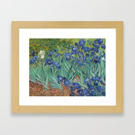 Irises, Vincent Van Gogh Framed Art Print