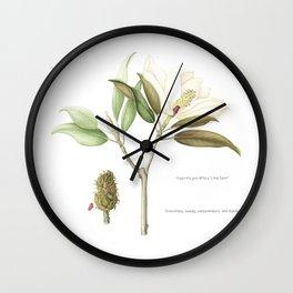 "Flowering ""Little Gem"" Magnolia Tree Wall Clock"
